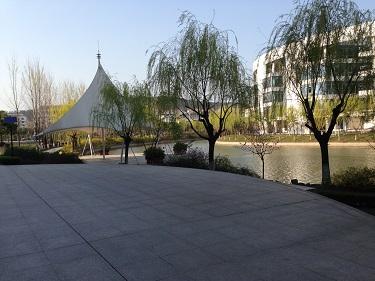 南京公共英语培训课程