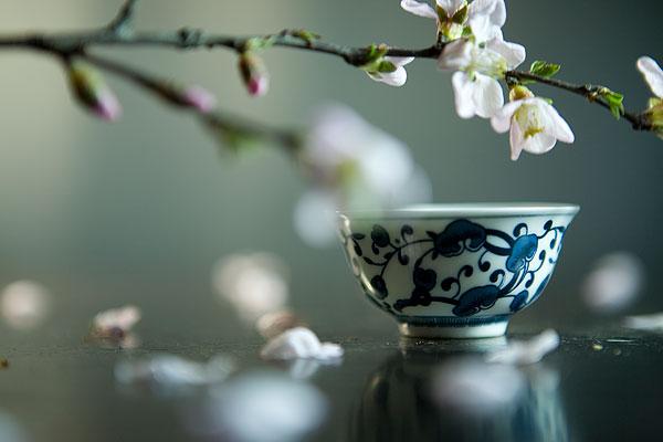 深圳茶艺培训班学费