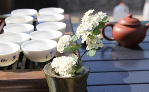 南京茶艺师证