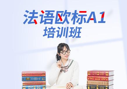 北京法语口语班