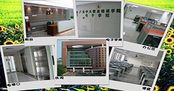 广州中大职业培训学院环境图